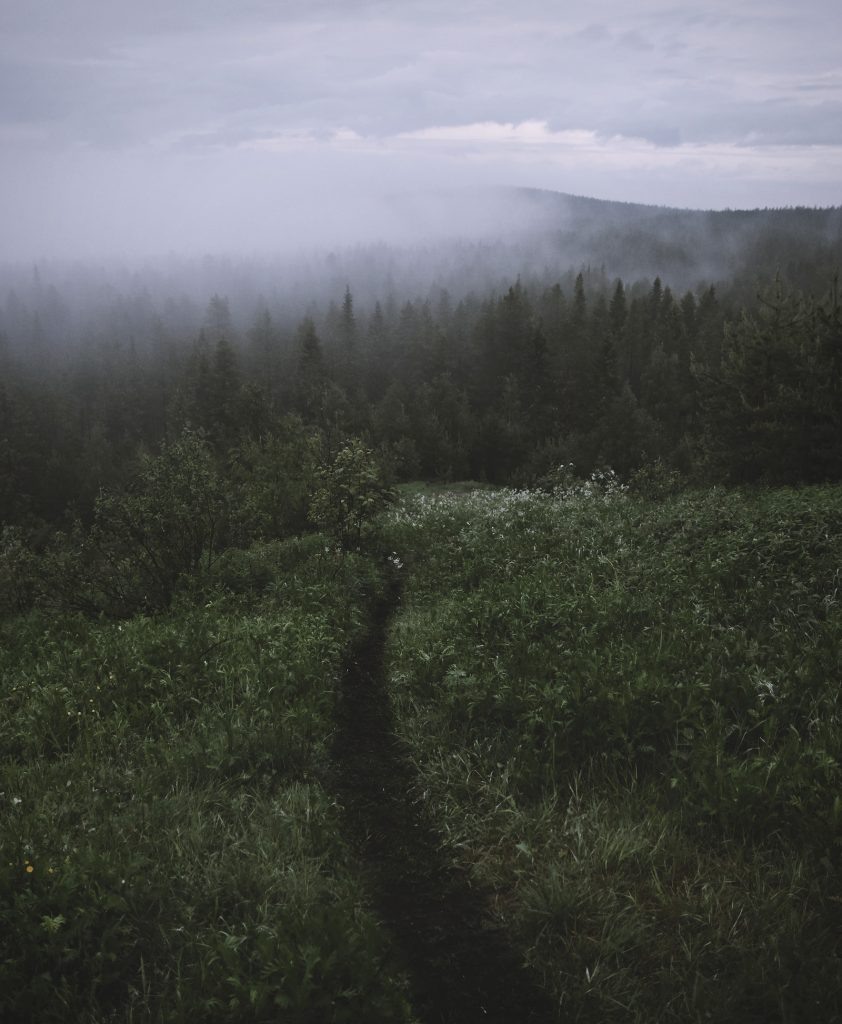 A springtime path leading into the fog at the Ounasvaara Hill. The Usva room is inspired by nature's mysterious fog.