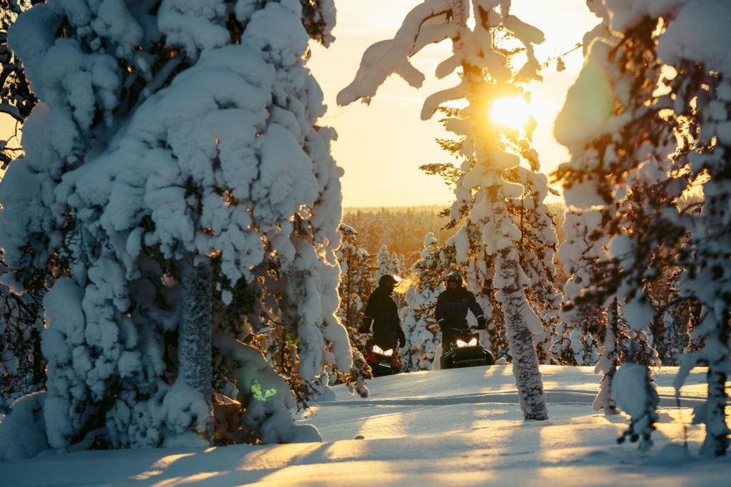 Snowmobile safari in a snowy forest in Rovaniemi